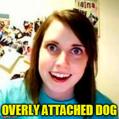 OVERLY ATTACHED DOG | made w/ Imgflip meme maker