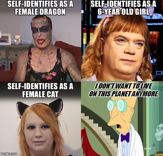 I don't want to live on this planet anymore... | SELF-IDENTIFIES AS A FEMALE DRAGON I DON'T WANT TO LIVE ON THIS PLANET ANYMORE. SELF-IDENTIFIES AS A 6-YEAR OLD GIRL SELF-IDENTIFIES AS A CA | image tagged in i don't want to live on this planet anymore,self-identify,memes | made w/ Imgflip meme maker