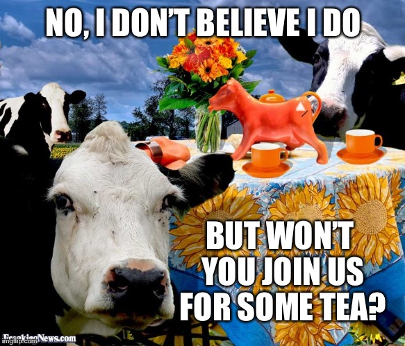 NO, I DON'T BELIEVE I DO BUT WON'T YOU JOIN US FOR SOME TEA? | made w/ Imgflip meme maker