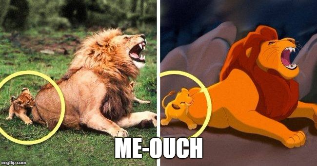 lion | ME-OUCH | image tagged in lion king | made w/ Imgflip meme maker