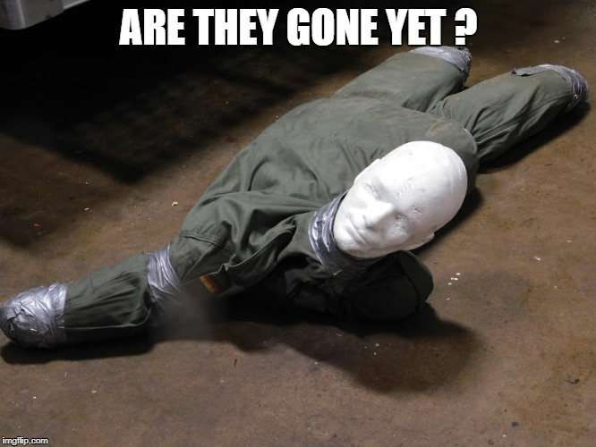 Training Dummies | ARE THEY GONE YET ? | image tagged in rescue | made w/ Imgflip meme maker