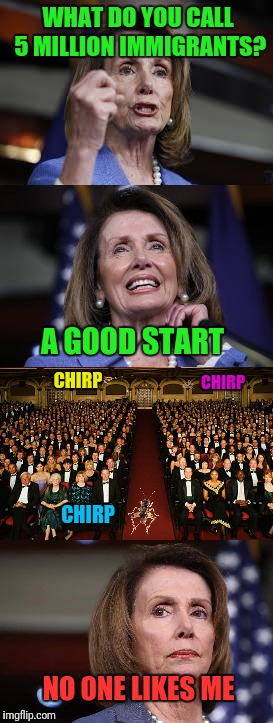 When Nancy Pelosi Tries To Tell a Joke | WHAT DO YOU CALL 5 MILLION IMMIGRANTS? NO ONE LIKES ME A GOOD START CHIRP CHIRP CHIRP | image tagged in nancy pelosi,illegal immigration,immigration,bad joke,cricket | made w/ Imgflip meme maker