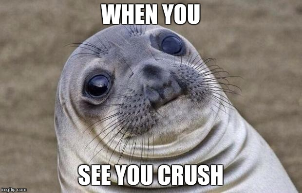 Awkward Moment Sealion Meme | WHEN YOU SEE YOU CRUSH | image tagged in memes,awkward moment sealion | made w/ Imgflip meme maker