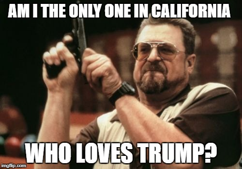 Am I The Only One Around Here Meme | AM I THE ONLY ONE IN CALIFORNIA WHO LOVES TRUMP? | image tagged in memes,am i the only one around here | made w/ Imgflip meme maker