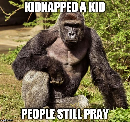 KIDNAPPED A KID PEOPLE STILL PRAY | image tagged in harambe | made w/ Imgflip meme maker