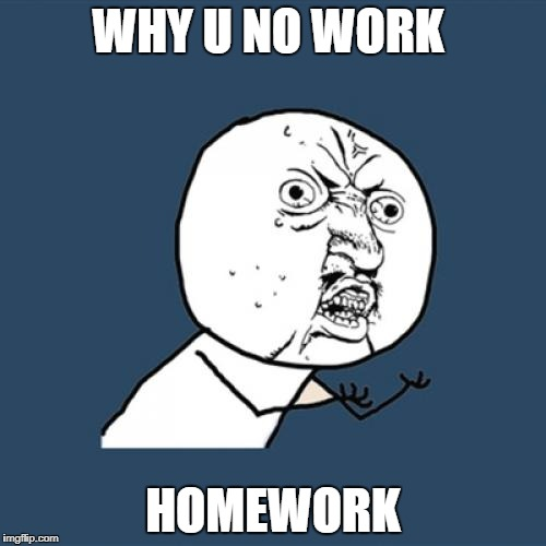 Y U No Meme | WHY U NO WORK HOMEWORK | image tagged in memes,y u no | made w/ Imgflip meme maker