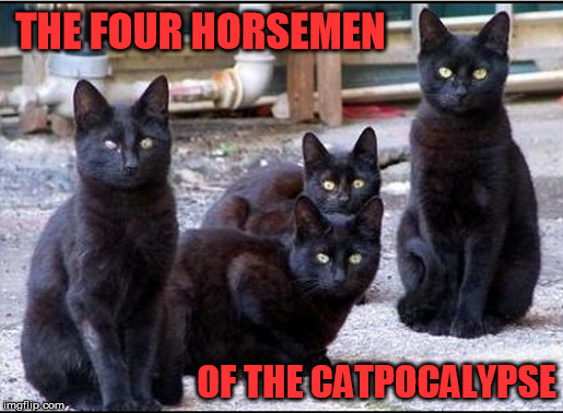 THE FOUR HORSEMEN OF THE CATPOCALYPSE | made w/ Imgflip meme maker