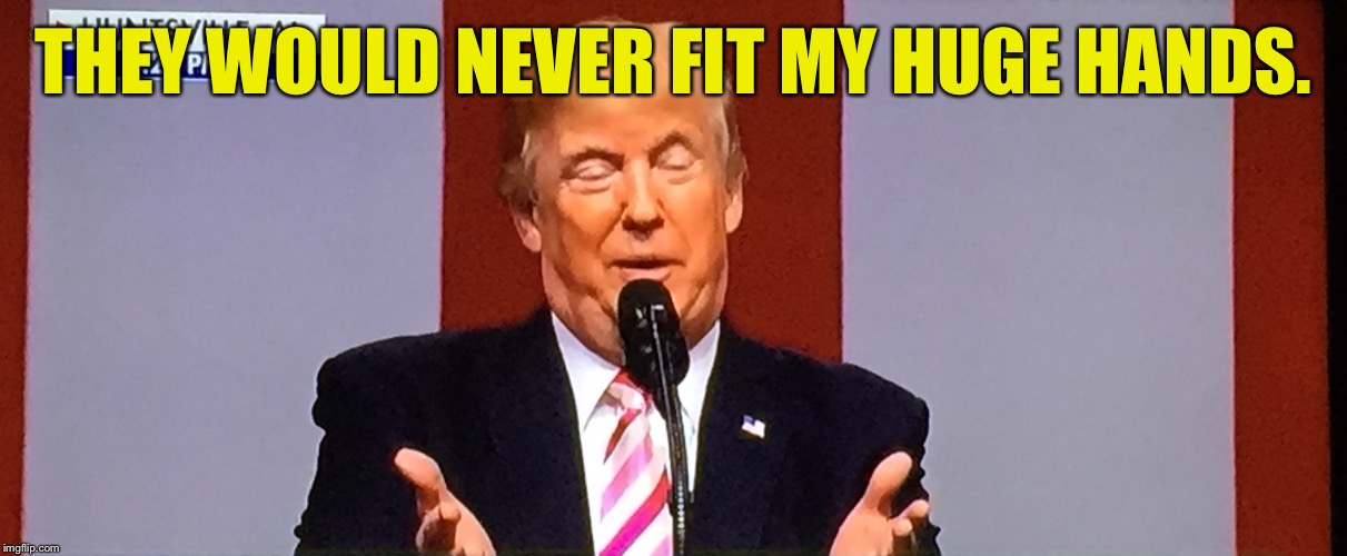 Trumpy | THEY WOULD NEVER FIT MY HUGE HANDS. | image tagged in trumpy | made w/ Imgflip meme maker