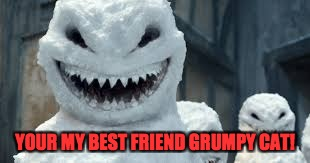 YOUR MY BEST FRIEND GRUMPY CAT! | image tagged in creepy snowmen are coming | made w/ Imgflip meme maker