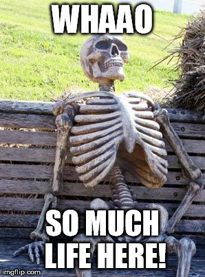 Waiting Skeleton Meme | WHAAO SO MUCH LIFE HERE! | image tagged in memes,waiting skeleton | made w/ Imgflip meme maker