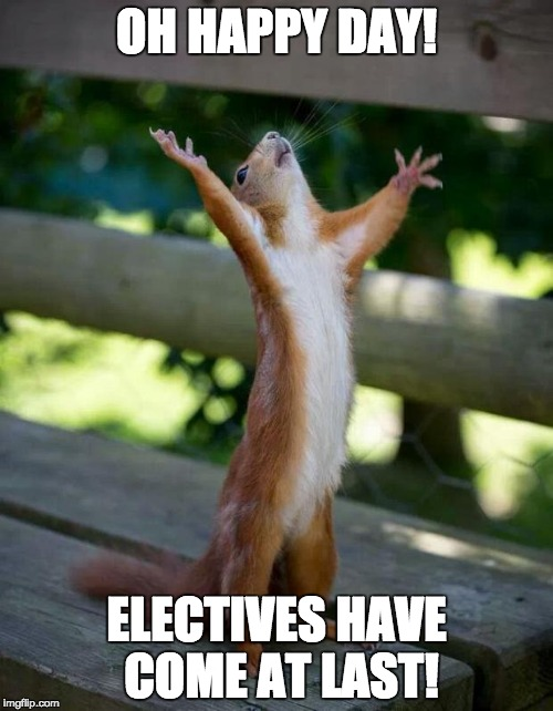 Happy Squirrel | OH HAPPY DAY! ELECTIVES HAVE COME AT LAST! | image tagged in happy squirrel | made w/ Imgflip meme maker