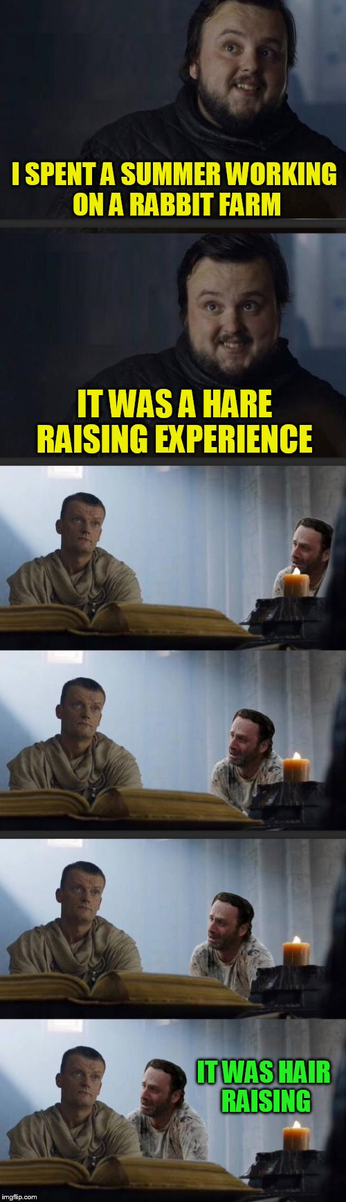 Sam The Pun Slayer!  | I SPENT A SUMMER WORKING ON A RABBIT FARM IT WAS A HARE RAISING EXPERIENCE IT WAS HAIR RAISING | image tagged in memes,samwell tarly,puns,game of thrones,the walking dead,rick grimes | made w/ Imgflip meme maker