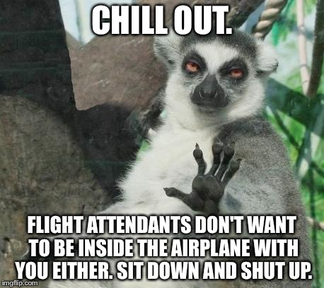 Sit down and shut up | CHILL OUT. FLIGHT ATTENDANTS DON'T WANT TO BE INSIDE THE AIRPLANE WITH YOU EITHER. SIT DOWN AND SHUT UP. | image tagged in memes,stoner lemur,flight attendant,american airlines,spoiled brat,airplane | made w/ Imgflip meme maker