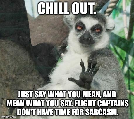 Stop being so sarcastic in the plane | CHILL OUT. JUST SAY WHAT YOU MEAN, AND MEAN WHAT YOU SAY. FLIGHT CAPTAINS DON'T HAVE TIME FOR SARCASM. | image tagged in memes,stoner lemur,american airlines,captain obvious,sarcasm,say what | made w/ Imgflip meme maker