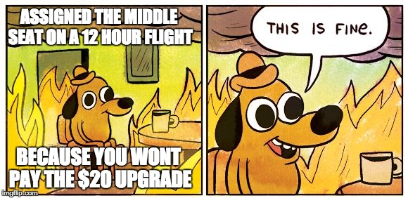 This is fine dog | ASSIGNED THE MIDDLE SEAT ON A 12 HOUR FLIGHT BECAUSE YOU WONT PAY THE $20 UPGRADE | image tagged in this is fine dog | made w/ Imgflip meme maker
