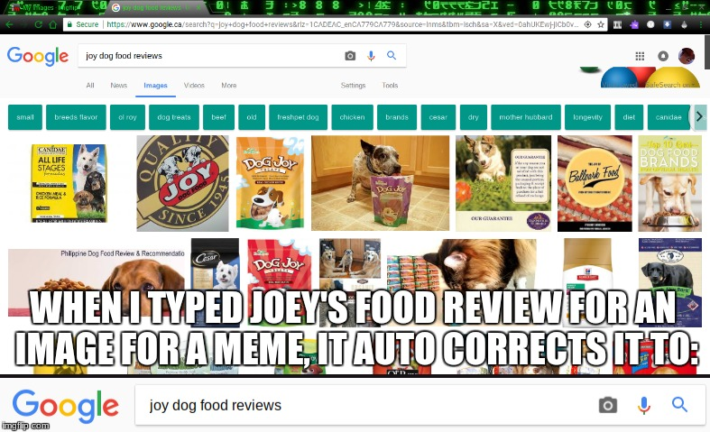 .-. <-(face) | WHEN I TYPED JOEY'S FOOD REVIEW FOR AN IMAGE FOR A MEME, IT AUTO CORRECTS IT TO: | image tagged in joey's food review,memes,funny,autocorrect | made w/ Imgflip meme maker