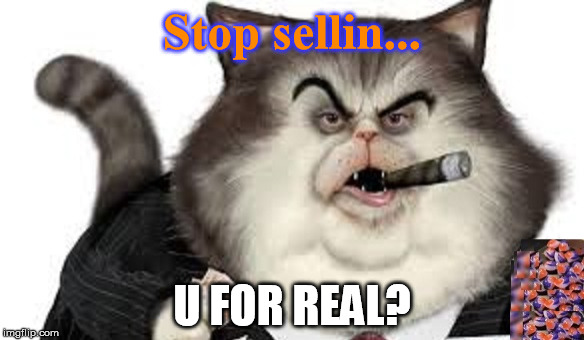Stop sellin... U FOR REAL? | image tagged in proctor | made w/ Imgflip meme maker