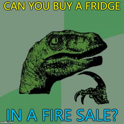 It would be cool to find out :) | CAN YOU BUY A FRIDGE IN A FIRE SALE? | image tagged in memes,philosoraptor,fire sale,fridge | made w/ Imgflip meme maker