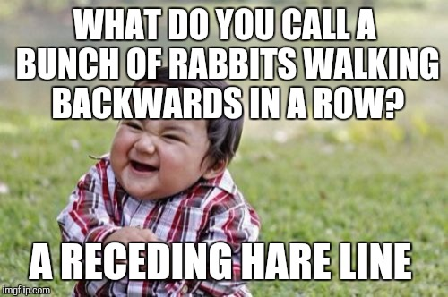Evil Toddler Meme | WHAT DO YOU CALL A BUNCH OF RABBITS WALKING BACKWARDS IN A ROW? A RECEDING HARE LINE | image tagged in memes,evil toddler | made w/ Imgflip meme maker