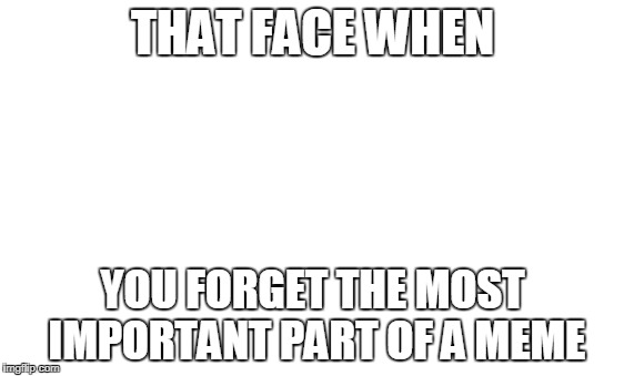 funny meme | THAT FACE WHEN YOU FORGET THE MOST IMPORTANT PART OF A MEME | image tagged in funny,meme,image,funny meme | made w/ Imgflip meme maker