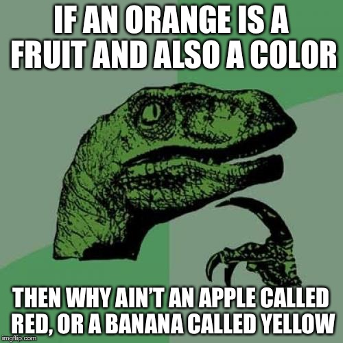 Philosoraptor Meme | IF AN ORANGE IS A FRUIT AND ALSO A COLOR THEN WHY AIN'T AN APPLE CALLED RED, OR A BANANA CALLED YELLOW | image tagged in memes,philosoraptor | made w/ Imgflip meme maker