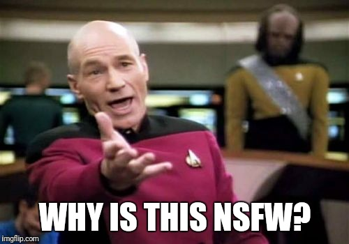 Picard Wtf Meme | WHY IS THIS NSFW? | image tagged in memes,picard wtf | made w/ Imgflip meme maker