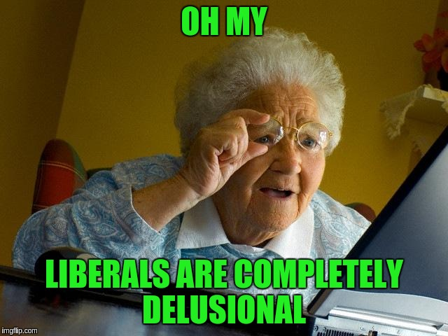 Grandma Finds The Internet Meme | OH MY LIBERALS ARE COMPLETELY DELUSIONAL | image tagged in memes,grandma finds the internet | made w/ Imgflip meme maker