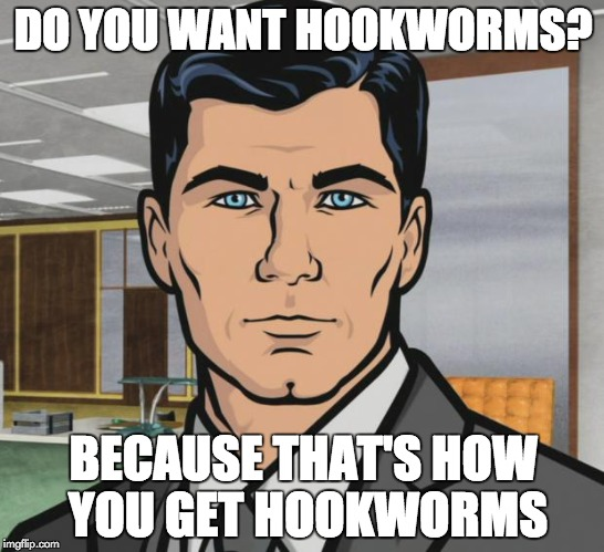 Archer Meme | DO YOU WANT HOOKWORMS? BECAUSE THAT'S HOW YOU GET HOOKWORMS | image tagged in memes,archer | made w/ Imgflip meme maker