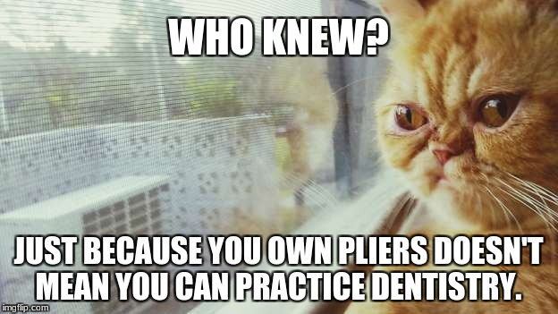 WHO KNEW? JUST BECAUSE YOU OWN PLIERS DOESN'T MEAN YOU CAN PRACTICE DENTISTRY. | image tagged in who knew | made w/ Imgflip meme maker