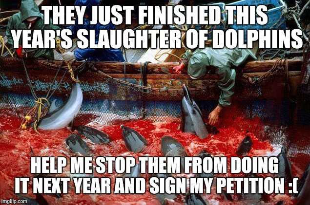 Petition in the comments. Please help | THEY JUST FINISHED THIS YEAR'S SLAUGHTER OF DOLPHINS HELP ME STOP THEM FROM DOING IT NEXT YEAR AND SIGN MY PETITION :( | image tagged in memes | made w/ Imgflip meme maker