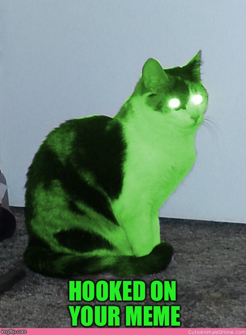 Hypno Raycat | HOOKED ON YOUR MEME | image tagged in hypno raycat | made w/ Imgflip meme maker