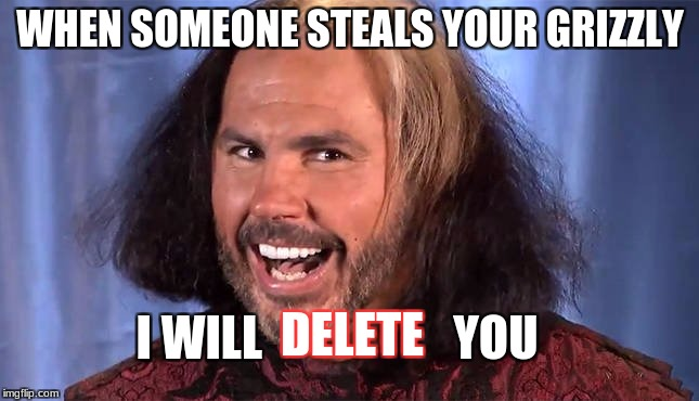Avenge my grizzly | WHEN SOMEONE STEALS YOUR GRIZZLY I WILL                    YOU DELETE | image tagged in matt hardy,unturned,memes | made w/ Imgflip meme maker
