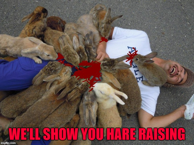 WE'LL SHOW YOU HARE RAISING | made w/ Imgflip meme maker