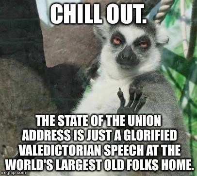 Who really cares about the State of the Union Address? | CHILL OUT. THE STATE OF THE UNION ADDRESS IS JUST A GLORIFIED VALEDICTORIAN SPEECH AT THE WORLD'S LARGEST OLD FOLKS HOME. | image tagged in stoner lemur,state of the union,politicians suck,donald trump,speech,old people | made w/ Imgflip meme maker