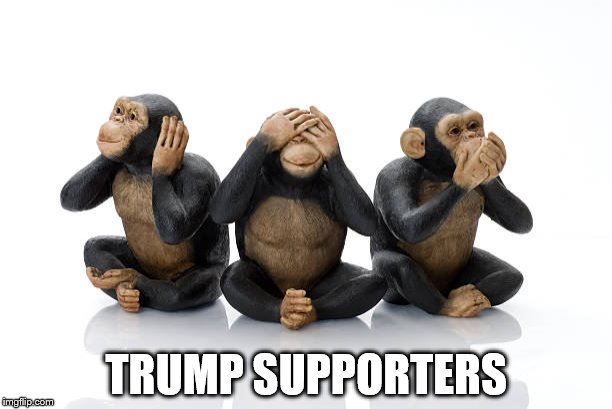 Trump Supporters Hear No Evil, See No and Speak No Evil  | TRUMP SUPPORTERS | image tagged in trump supporters,hear no evil,see no evil,speak no evil,chimpanzee | made w/ Imgflip meme maker