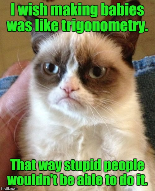 Grumpy Cat Meme | I wish making babies was like trigonometry. That way stupid people wouldn't be able to do it. | image tagged in memes,grumpy cat | made w/ Imgflip meme maker