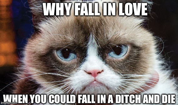 Grumpy cat  | WHY FALL IN LOVE WHEN YOU COULD FALL IN A DITCH AND DIE | image tagged in grumpy cat | made w/ Imgflip meme maker