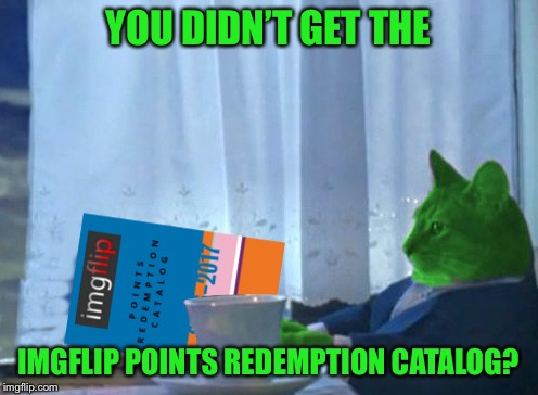 RayCat redeeming points | YOU DIDN'T GET THE IMGFLIP POINTS REDEMPTION CATALOG? | image tagged in raycat redeeming points | made w/ Imgflip meme maker