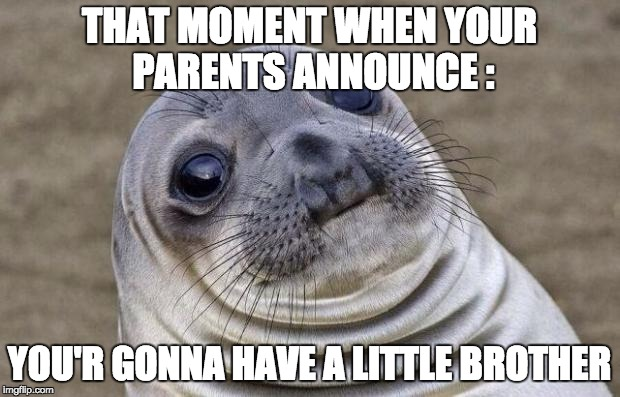 Awkward Moment Sealion Meme | THAT MOMENT WHEN YOUR PARENTS ANNOUNCE : YOU'R GONNA HAVE A LITTLE BROTHER | image tagged in memes,awkward moment sealion | made w/ Imgflip meme maker