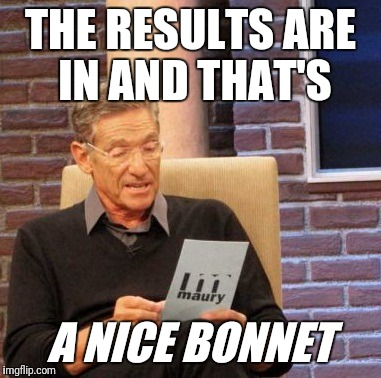 Maury Lie Detector Meme | THE RESULTS ARE IN AND THAT'S A NICE BONNET | image tagged in memes,maury lie detector | made w/ Imgflip meme maker