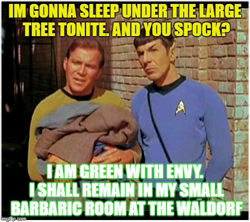There's something moving under that tree Mr. Spock.  SOME... THING... | IM GONNA SLEEP UNDER THE LARGE TREE TONITE. AND YOU SPOCK? I AM GREEN WITH ENVY. I SHALL REMAIN IN MY SMALL BARBARIC ROOM AT THE WALDORF | image tagged in kirk to spock enterprise overm,star trek into star wars,tiberius the hobo years,spock learns about the penthouse | made w/ Imgflip meme maker