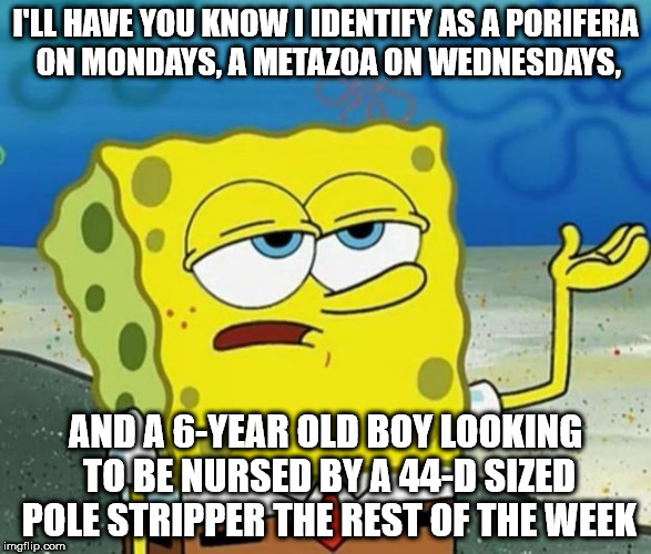 I'LL HAVE YOU KNOW I IDENTIFY AS A PORIFERA ON MONDAYS, A METAZOA ON WEDNESDAYS, AND A 6-YEAR OLD BOY LOOKING TO BE NURSED BY A 44-D SIZED P | image tagged in spongebob will have you know,gender identification,age identity | made w/ Imgflip meme maker