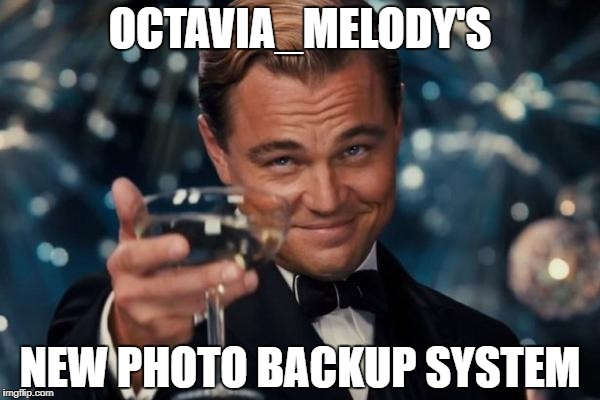 Leonardo Dicaprio Cheers Meme | OCTAVIA_MELODY'S NEW PHOTO BACKUP SYSTEM | image tagged in memes,leonardo dicaprio cheers | made w/ Imgflip meme maker