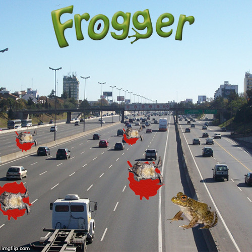 If Video Games Were Real | image tagged in froggy frogger hippos video game,ribbet to the tibbet to the tippy tippy pause my problem solvers name is mook,memes | made w/ Imgflip meme maker