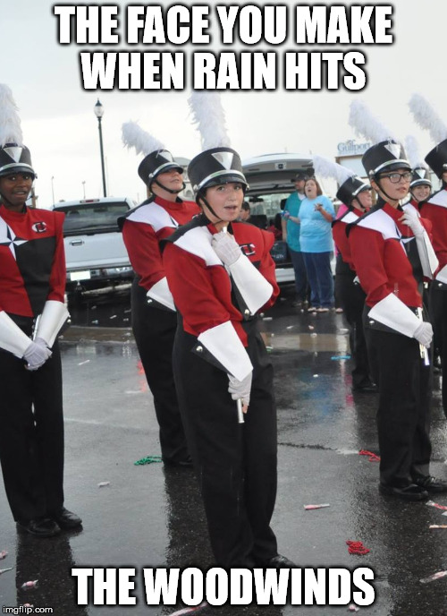 THE FACE YOU MAKE WHEN RAIN HITS THE WOODWINDS | image tagged in marching band,flute | made w/ Imgflip meme maker