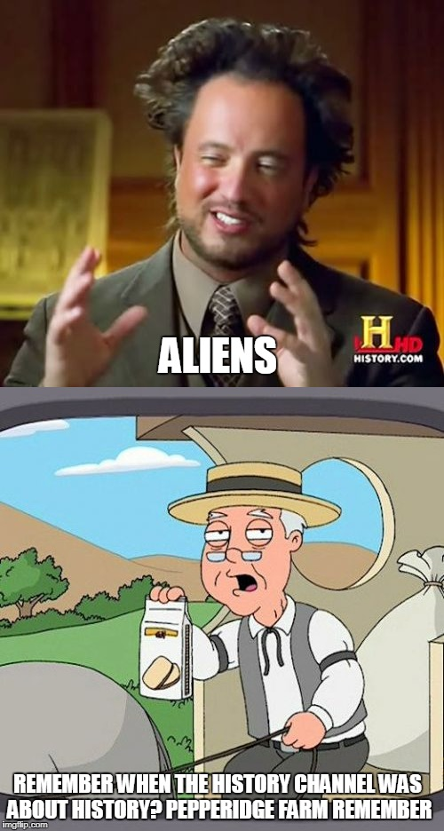 ALIENS REMEMBER WHEN THE HISTORY CHANNEL WAS ABOUT HISTORY? PEPPERIDGE FARM REMEMBER | image tagged in ancient aliens,pepperidge farm remembers | made w/ Imgflip meme maker