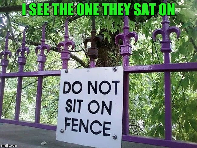 There is always a reason for a sign | I SEE THE ONE THEY SAT ON | image tagged in sign,fence,pipe_picasso | made w/ Imgflip meme maker