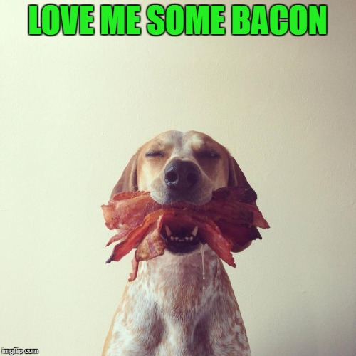 LOVE ME SOME BACON | made w/ Imgflip meme maker