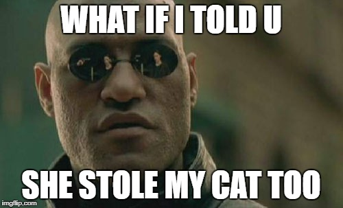 Matrix Morpheus Meme | WHAT IF I TOLD U SHE STOLE MY CAT TOO | image tagged in memes,matrix morpheus | made w/ Imgflip meme maker