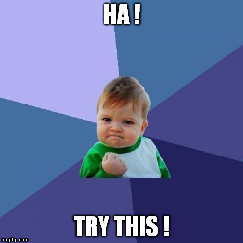 Success Kid Meme | HA ! TRY THIS ! | image tagged in memes,success kid | made w/ Imgflip meme maker
